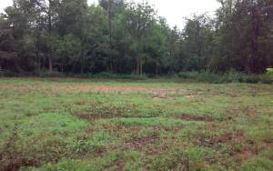 3 Development Lots In Madison County