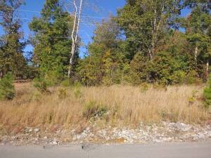 Deer Run Subdivision Lots