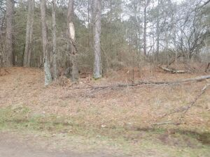 14 Acres In Blount County