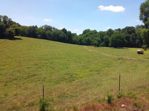 23 Acres On Veto Road