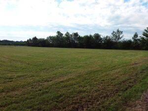 1.23 Acres± On Highway 251