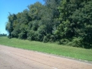 4.39 Acres± On Wall Triana Hwy.