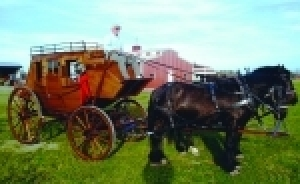 Buggies, Carriages, Stagecoach & More