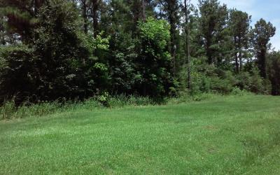 210 Acre± Farm In Hale County