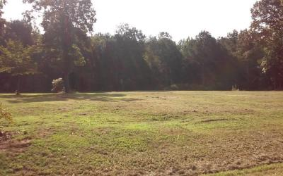 Residential lot in Toney, Alabama (Limestone County)