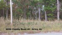 5 ACRES± OF MOSTLY WOODS