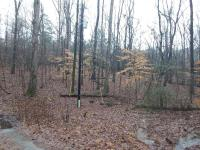 1.09 Acre± Residential Lot in Toney, Alabama
