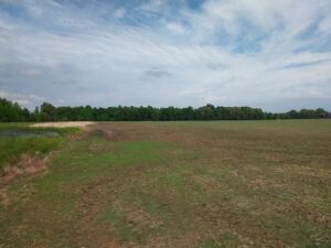 57.5 Acres± of prime real estate on Elkwood Section Road in Ardmore, Alabama (Madison County).