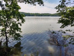 Lot 8 - A waterfront lot with home within Lakeside Estates Subdivision