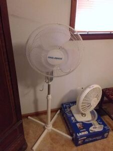 Lasko Table Fan & Cool Breeze Standing Fan