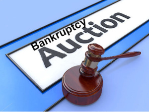 Auction results are subject to the approval of the United States Bankruptcy Court for the Northern District of Alabama, Northern Division; Case #19-82633-CRJ-7.