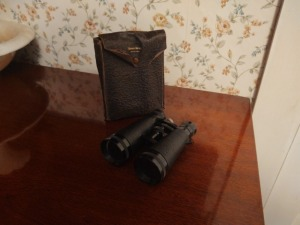 Vintage Binoculars With Compass & Leather Carry Case