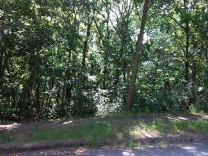 (3) Residential lots selling as a whole in Morningside Subdivision, 1st Addition