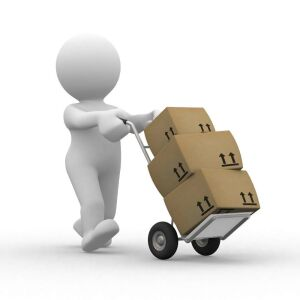 Pick-up will be Thursday, August 26th STRICTLY between 9 AM - 3 PM.  Location:  26562 Veto Road in Elkmont & will be stated in the lower, left corner of your winning invoice.  We will not have staff or boxes available to help you load items. Please plan a