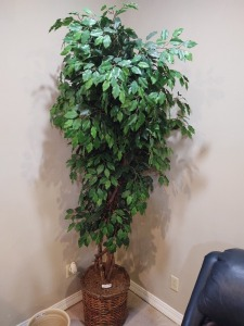 Large faux tree in woven basket planter - 6'8""