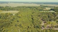 15.50 Acres± Of Mostly Woods - 2