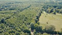 15.50 Acres± Of Mostly Woods - 4