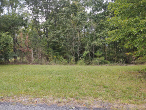 0.5 ACRE± LOT OFF COUNTY ROAD 107 IN SKY LINE, AL
