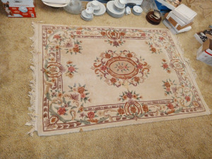 Kweilin Classic Decorative Area Rug From Sears; 4' x 6'
