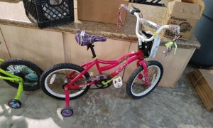 Next Misty Girls Bicycle With Training Wheels
