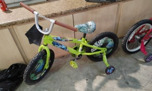 Teenage Mutant Ninja Turtles Boy Bicycle With Training Wheels